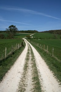 Long walk home 4: A farm track and fields on the South Downs, Sussex, England, in spring.
