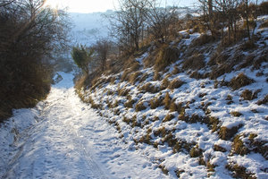 Snowy track: A track on the South Downs, West Sussex, England, in winter.