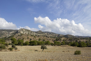 Cyprus landscape 11: Stony fields in the dry coniferous mountains of Cyprus.