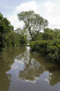 Quiet river: A quietly flowing river in East Sussex, England.