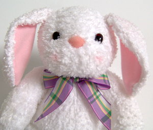 Bunny: A upper body shot of a stuffed bunny. Very cute....