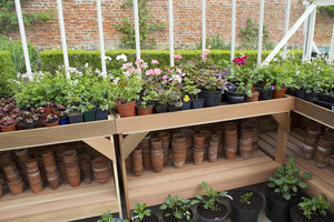 Greenhouse plant pots