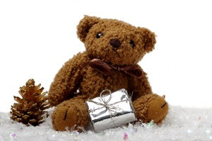 Teddybear with present