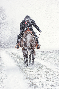 Ride in Snow Storm
