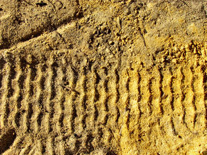 sandtracks3: impressions left on sand and soil in active workplace