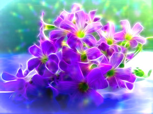 Fractal Flowers: A posy of fractal flowers with a light effect. This would make a nice get well, birthday, note or Mothers Day card.
