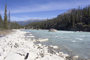 River edge: Rocky bank of the Athabasca River, Canada.