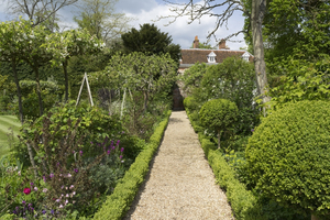 Garden path: A path between box (Buxus) hedges in a walled garden in Hampshire, England, in spring.