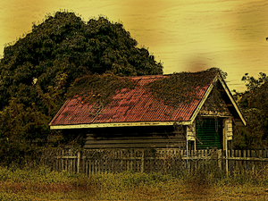 Free stock photos rgbstock free stock images abandoned shed xymonau march 26 2013 37 - Rustic wood fences a pastoral atmosphere ...