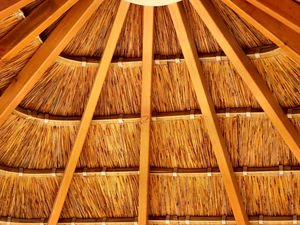 thatched patio roof5