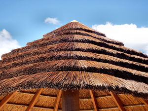 thatched patio roof3