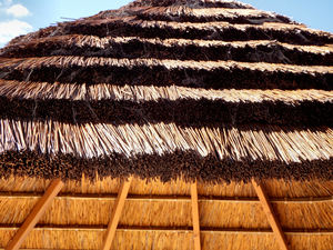 thatched patio roof4