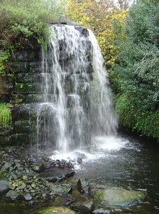 Waterfall 5: it's a waterfall in the bears habitat in Emmen Zoo