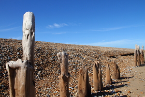 Wooden posts on a stony beach
