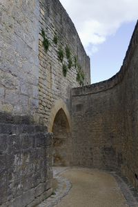 Castle walls: Walls of a castle in the Dordogne, France.