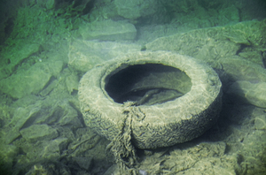 old tire in water