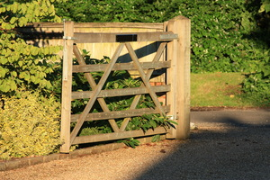 Open gate: Open domestic gate