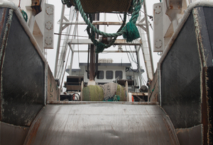 Newport Trawler: A view of the stern of one of  the trawlers in Newport harbour,Oregon,USA.