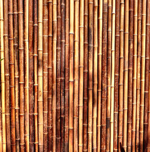 bamboo screen fence1