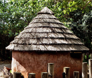 jungle huts3: thatched adobe style rondavels - round huts