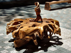 polished wood shapes2: huge tree roots cut, polished and turned into modern furniture